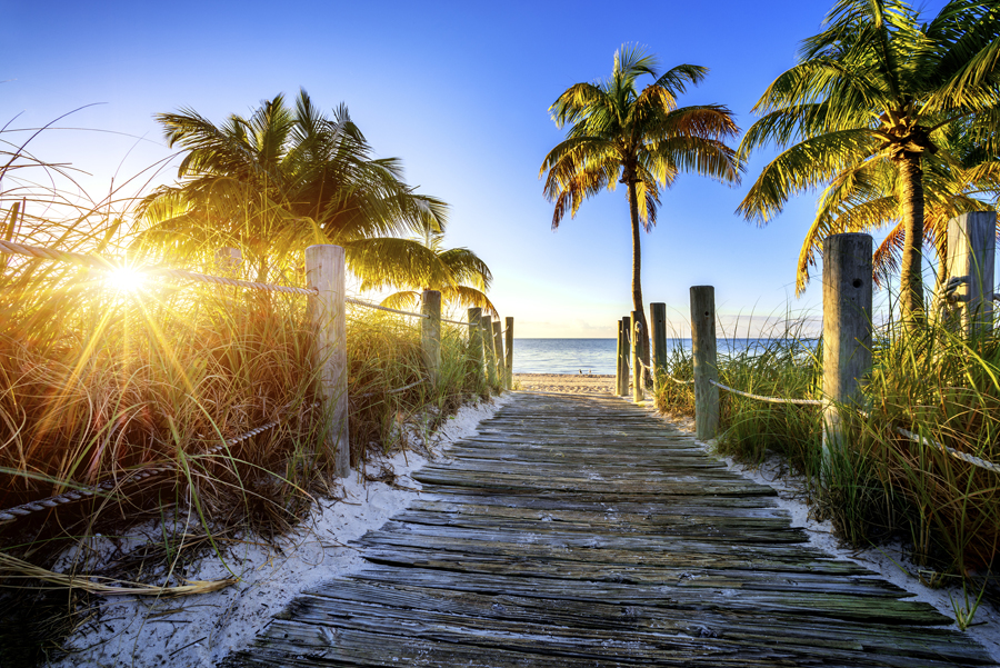 Wooden walkway towards beach with palm trees