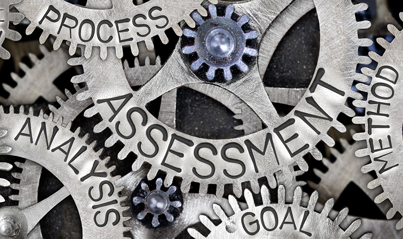 Process, Analaysis, and Assessment cogs